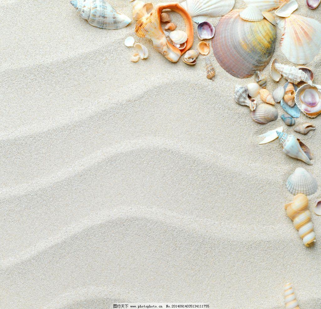 唯美沙滩贝壳 秦皇岛 北戴河 旅游 自然 风景 风光 摄影 清新 唯美 意