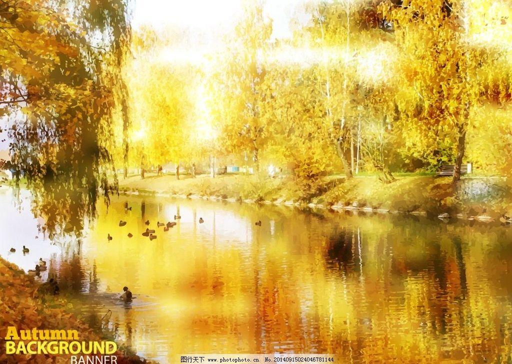 秋景 枫叶 落叶