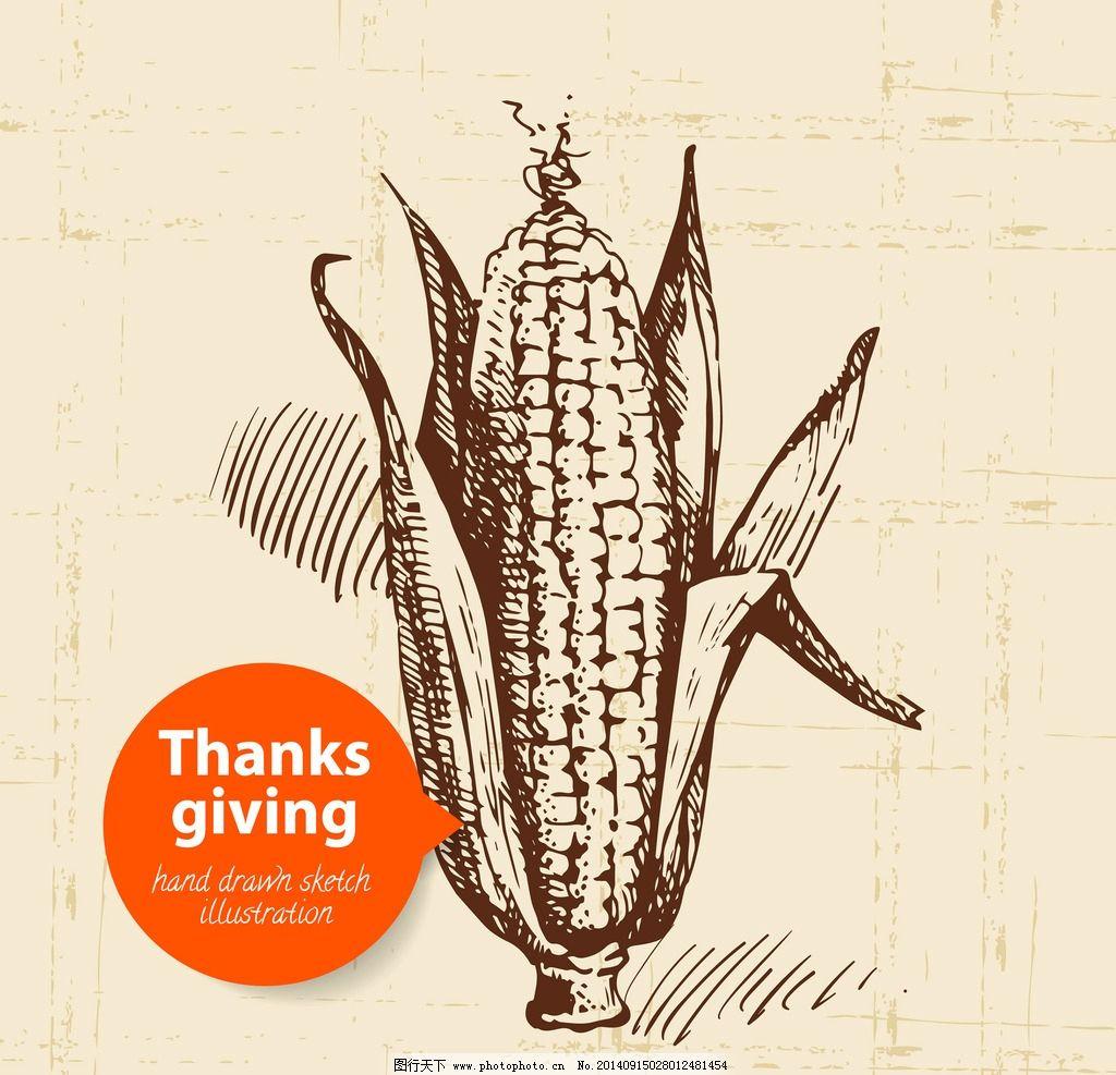 手绘食物 手绘 线稿 玉米 插画 速写 素描 食物 矢量素材 eps 餐饮