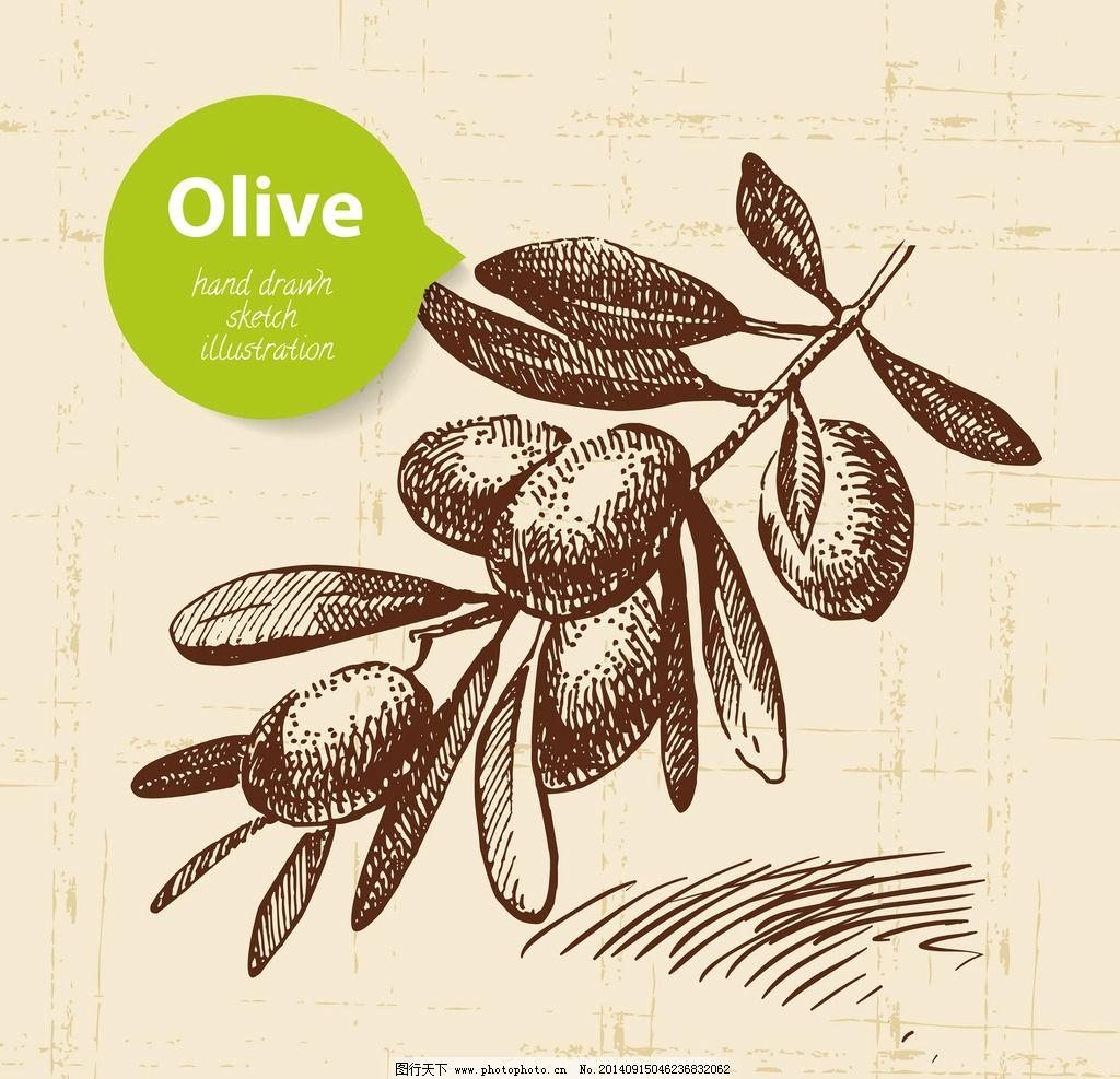 手绘食物 手绘 线稿 橄榄 快餐 插画 速写 素描 食物 西餐 矢量素材图片