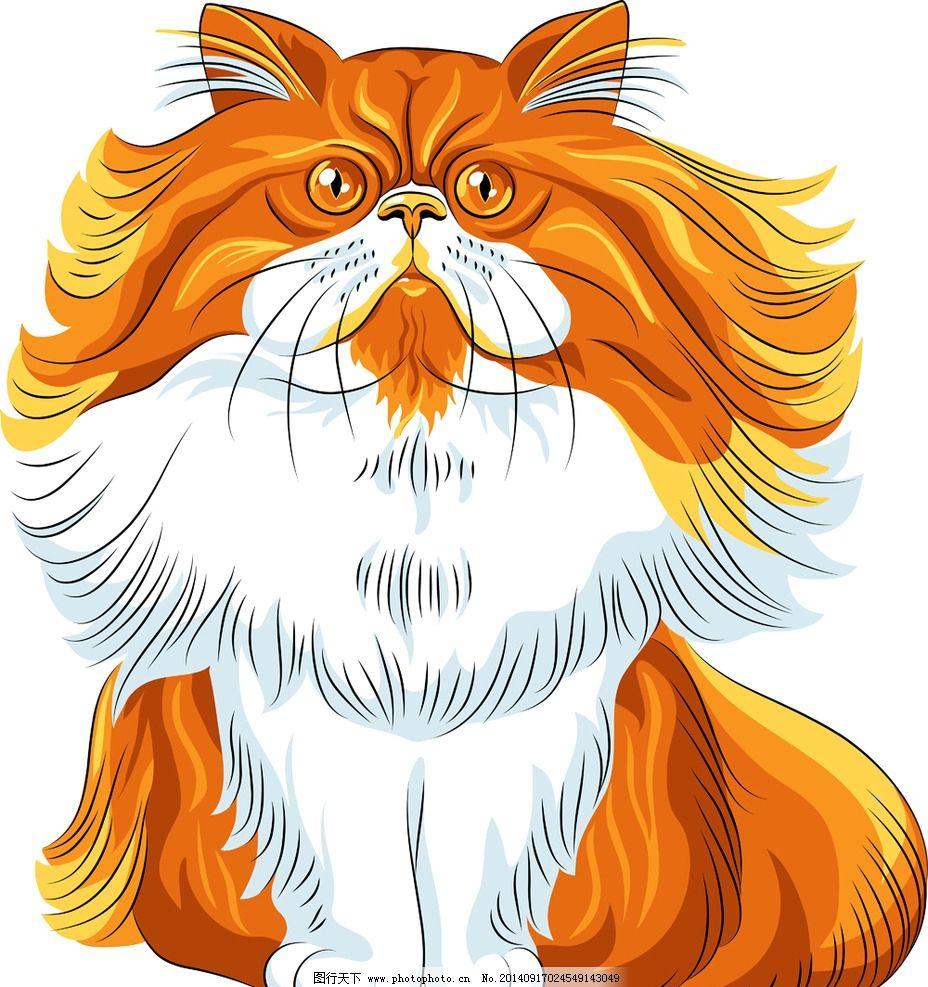 宠物猫 手绘动物 手绘