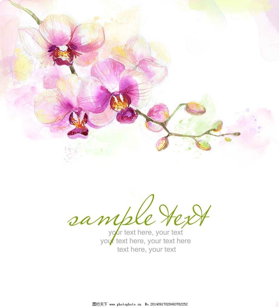 手绘水彩兰花图片