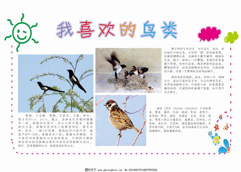 儿童对各种鸟类的认识手抄报免费下载 动物 手抄报 动物 手抄报 鸟类