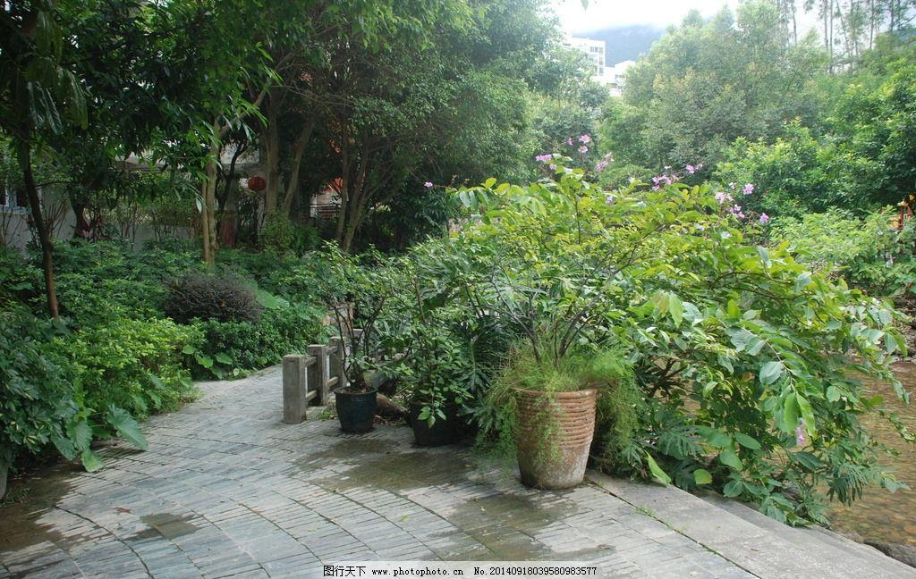 小区 小区规划 园林 风景 树木 小区环境 建筑小区 植物 花草 绿化