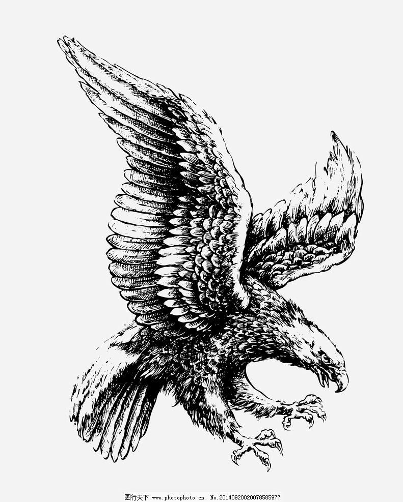 暗黑3老鹰翅膀怎么刷-暗黑3老鹰翅膀图片-暗黑3现在还掉翅膀吗-暗黑三翅膀大全-暗黑3最好看的翅膀-暗黑3可以刷哪些翅膀