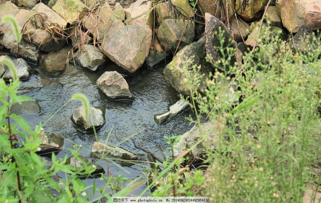 礁石 水池/礁石水池图片