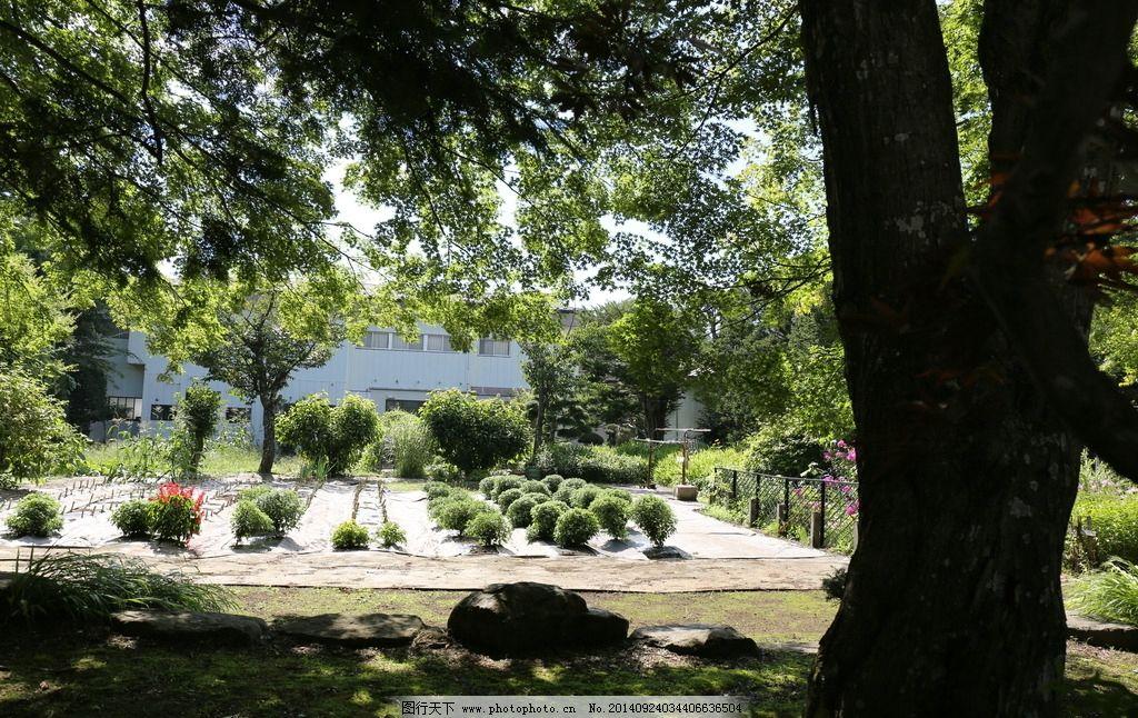 大樹 小樹 莊園 石頭 建筑 房子  攝影 自然景觀 山水風景 72dpi jpg