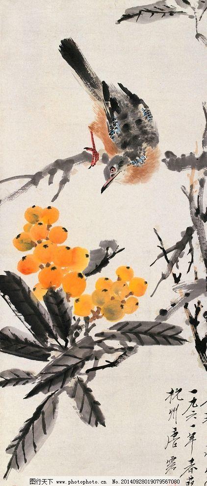 彩铅枇杷手绘作品