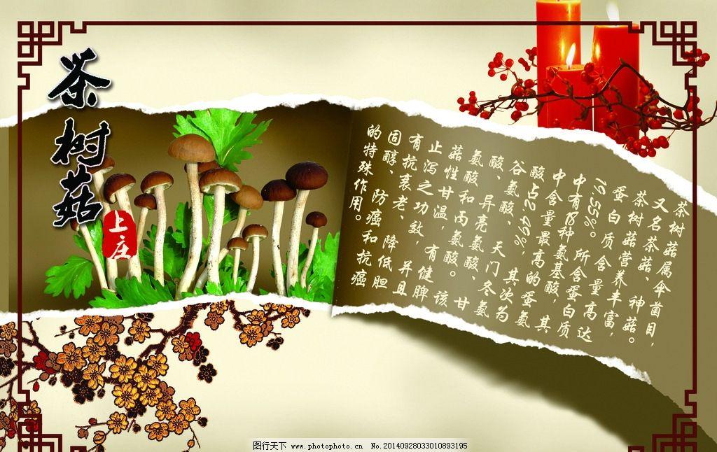 茶 树 花 蘑菇 撕开的纸  设计 psd分层素材 psd分层素材 100dpi psd
