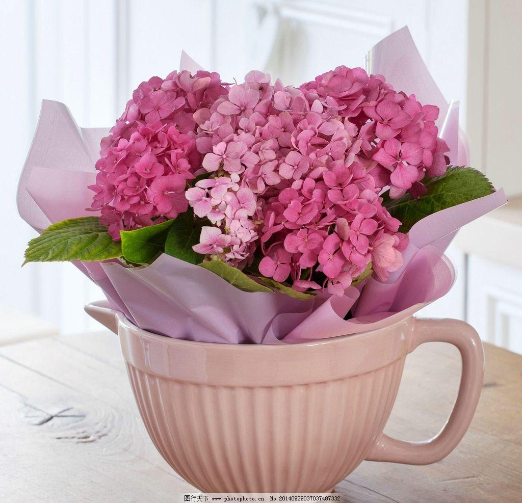 结婚花束 结婚 花束 求婚 情人节 花朵 鲜花 花卉 花草 花 植物 唯美